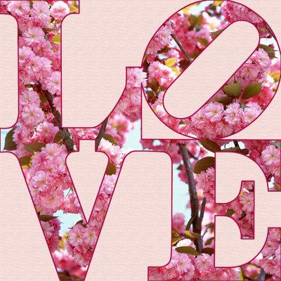 Floral - LOVE379