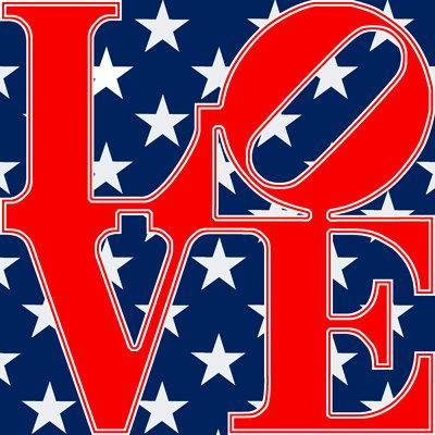 American Flag - LOVE313