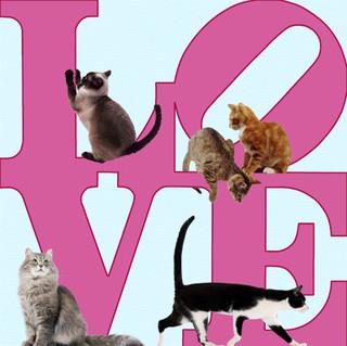 LOVE27.jpg