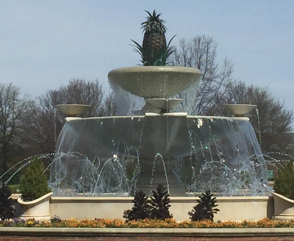 Fountain | Carolinas Medical Center Northeast