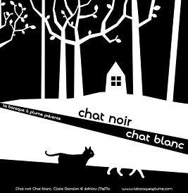 visuel chat noir chat blanc.jpg