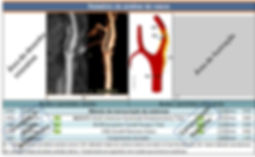 teleris_site_tutorial_estruturacao_002.j
