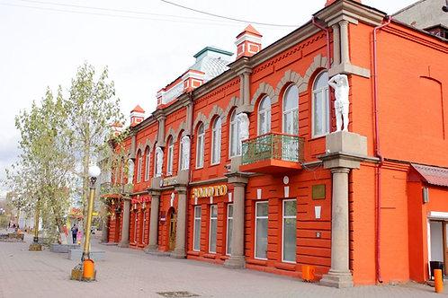 Вебинар. Наталия Мясникова. Дом Капельмана