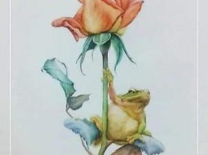 La Rosa y el sapo 🌹🐸