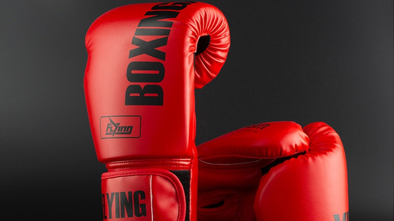 8/10/12oz Professional Boxing Gloves Leather Punching Glove