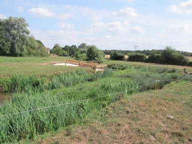 Mise en place d'aménagements pour allier élevage et meilleure qualité de la rivière. (Mehun-sur-