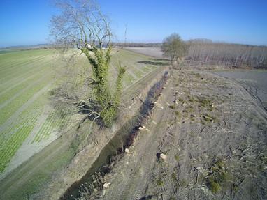 Démarrage des travaux de restauration de l'Yèvre à Baugy