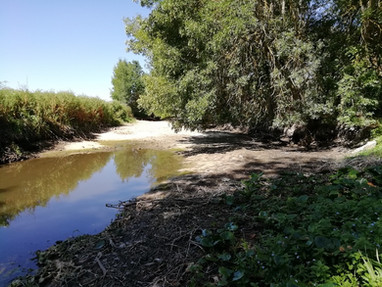 Actualité sécheresse, état critique de plusieurs cours d'eau