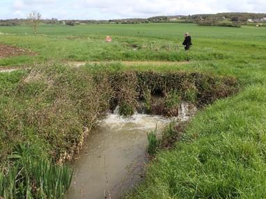Restauration de la continuité sur l'Yèvre à Gron (Pont de la Plaque)