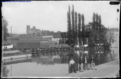 Les marais de la Voiselle à Bourges