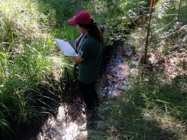 Stage d'étude sur le transit sédimentaire du bassin du Barangeon