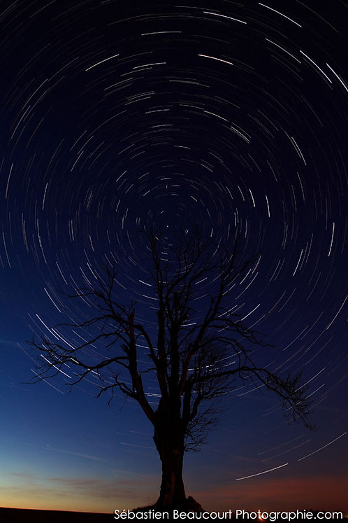 Rotation du ciel autour de l'étoile polaire