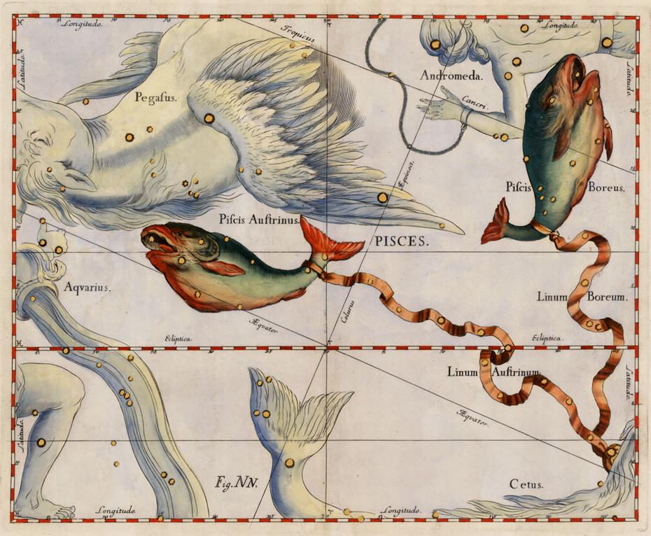 La constellation des Poissons dans l'atlas d'Hevelius (1690)