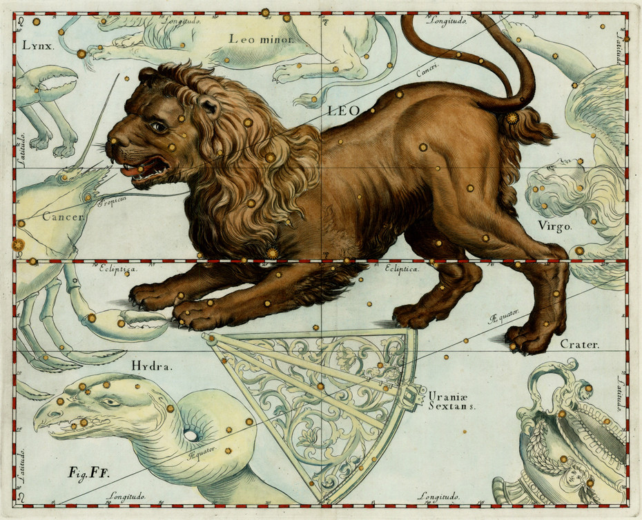 La constellation du Lion dans l'atlas d'Hevelius (1609)