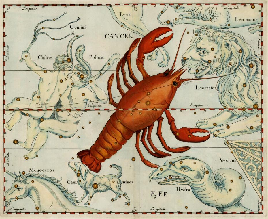 Le Cancer sous l'apparence d'une écrevisse dans l'atlas d'Hevelius (1690)