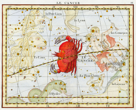 Constellation du Cancer dans l'atlas de Flamsteed (1630).