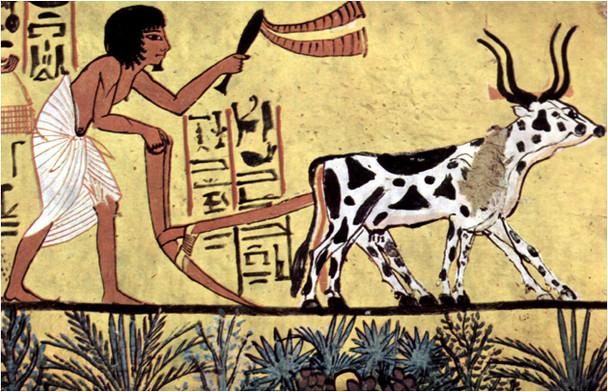 Calendrier Egyptien.Le Calendrier Egyptien Explications