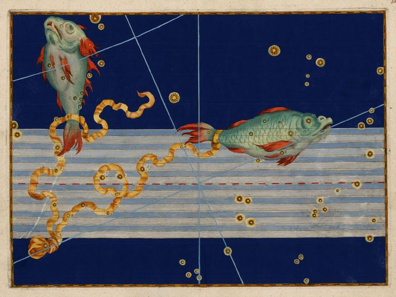 Constellation des Poissons dans l'Uranometria de Bayer