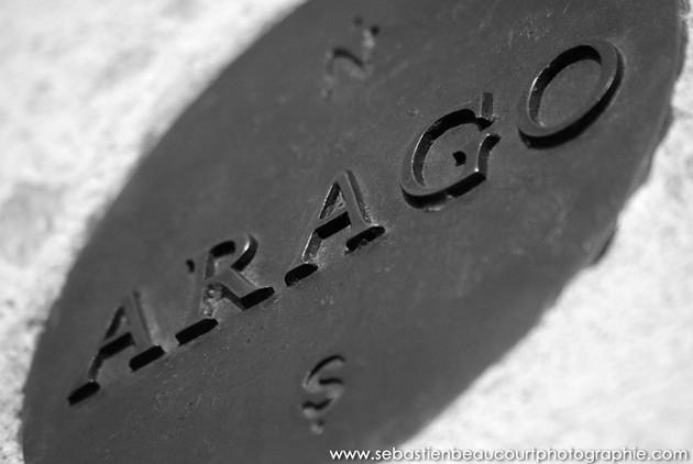 Médaillon Arago