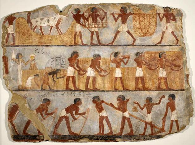 Peintures de la tombe d'Ounsou : travaux agricoles