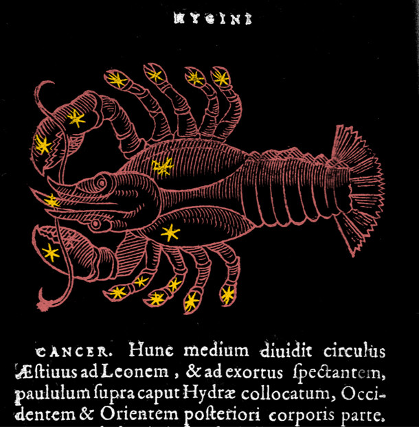 Constellation du Cancer dans l'atlas d'Hyginus