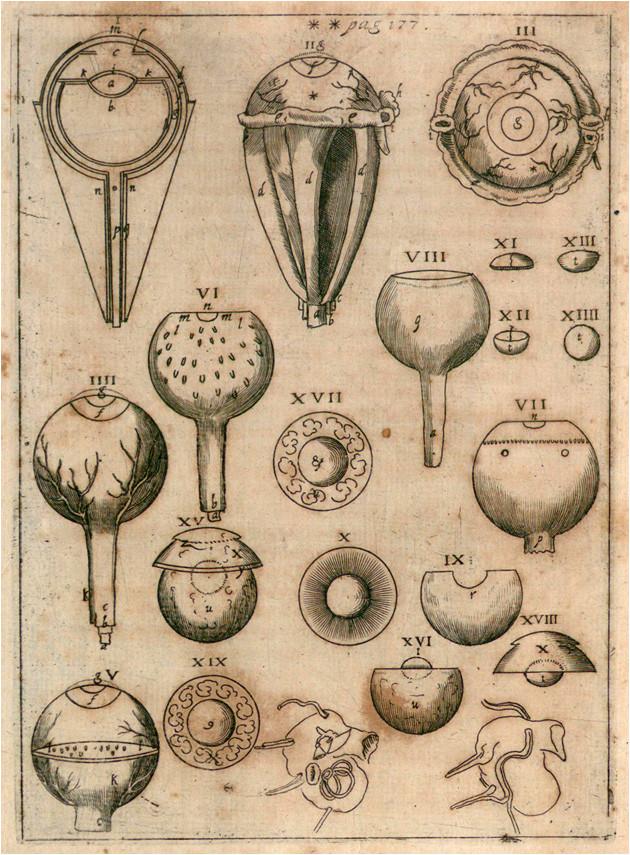 Optica de Johannes Kepler