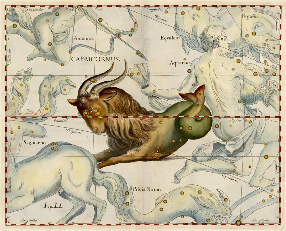 Constellation du Capricorne dans l'Atlas d'Hevelius (1690)