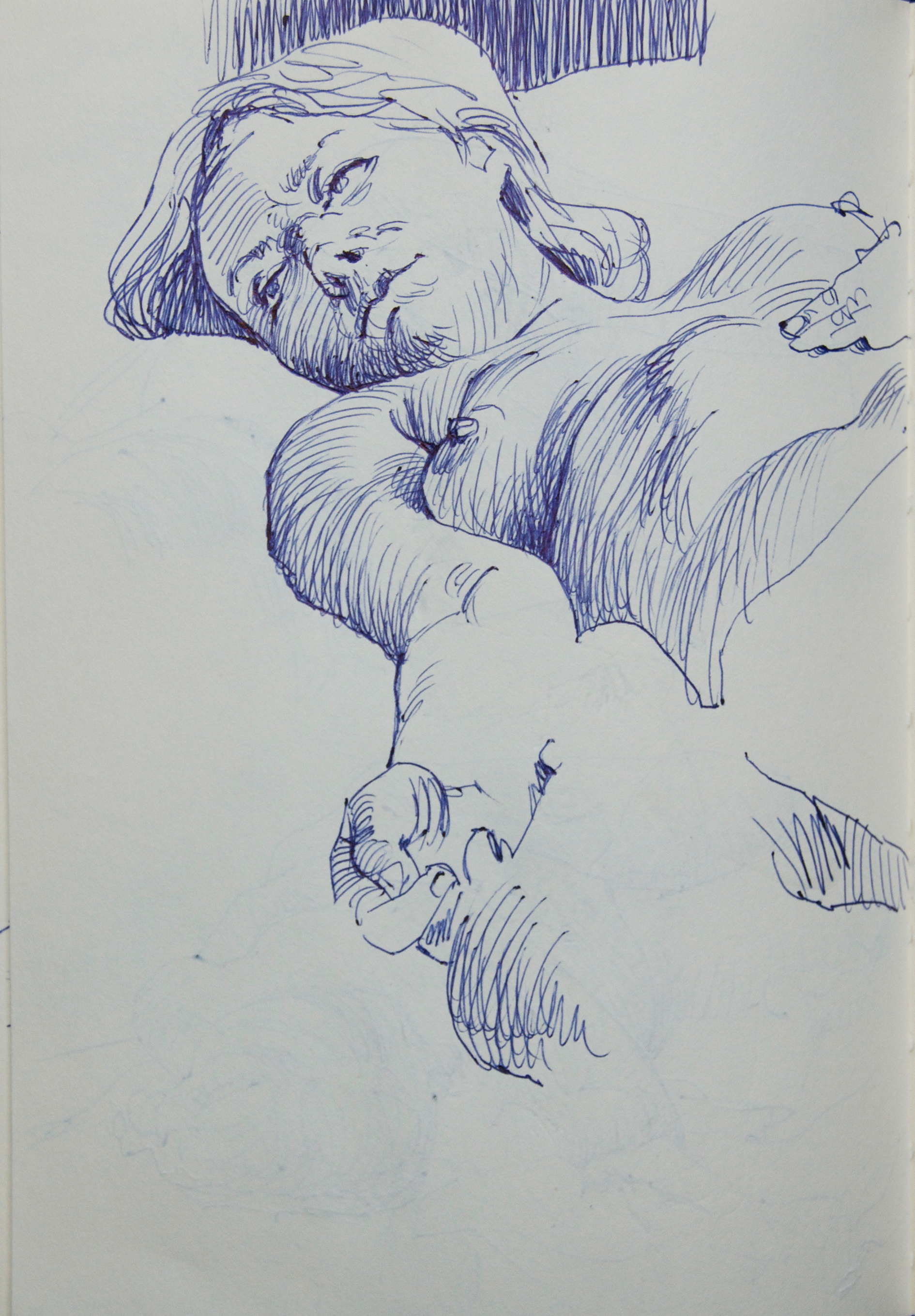 peeters-paintings.com 101