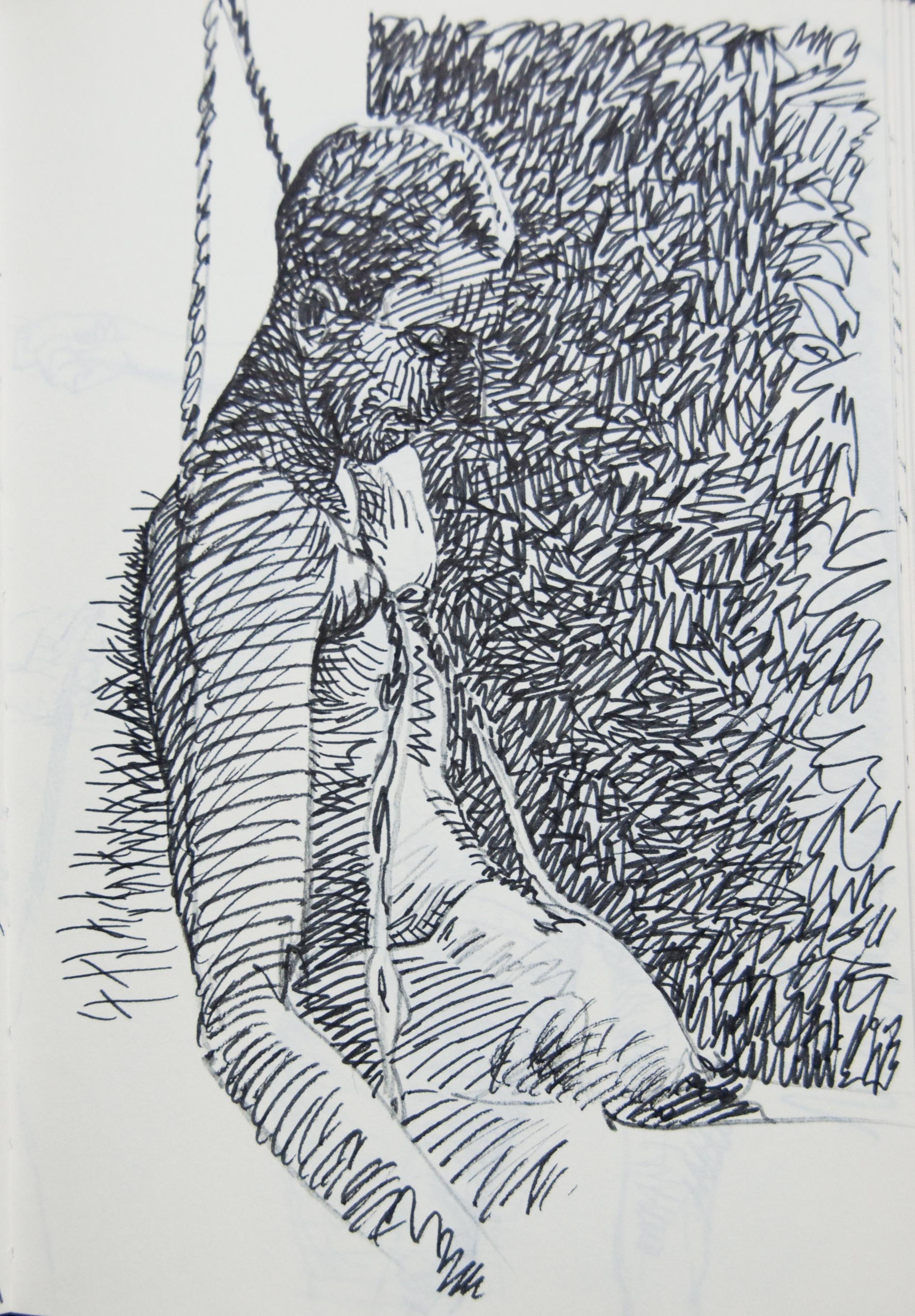 peeters-paintings.com 63
