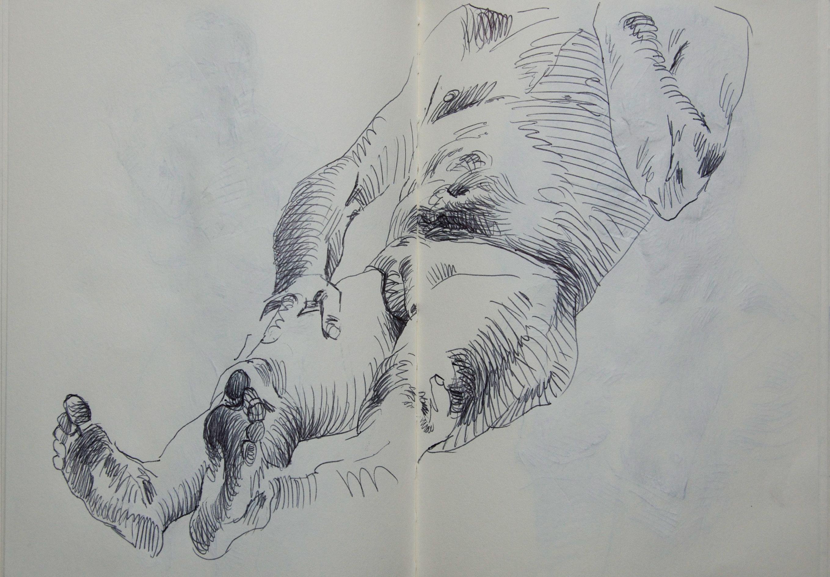 peeters-paintings.com 114