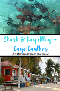 Join me as I spend the day exploring the gorgeous island of Caye Caulker, swimming with Nurse Sharks and Sting Rays and snorkeling the largest living reef in the world!