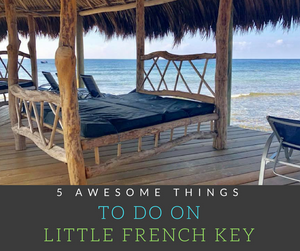 Join me as I map out 5 Awesome Things to Do on Little French Key, a private island off of the coast of Honduras!  Voted the #1 attraction in Roatan by TripAdvisor!