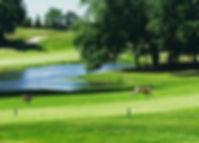 Shenandoah-Golf-Course.jpg