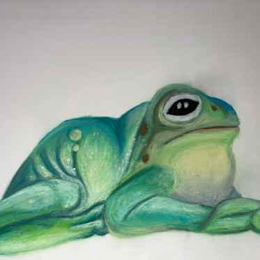 Frog Study 2 (Process)