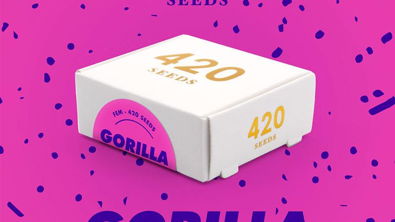 Gorilla Cookies - Pack 3 semillas