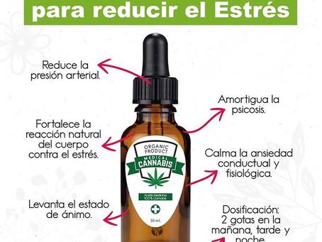 Aceite Medicinal CBD y sus beneficios.