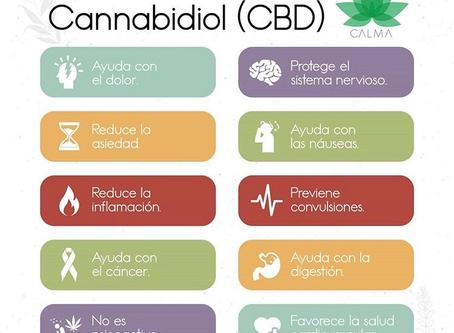 10 Beneficios del CBD