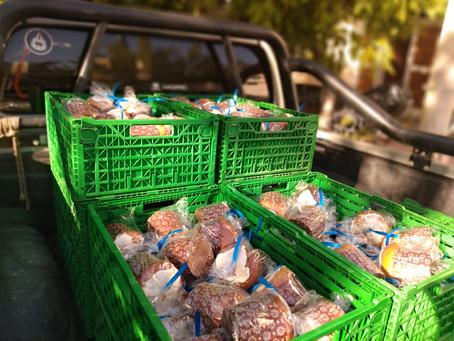 Rescate de alimentos junto a ARCOR