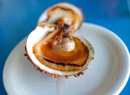 Mediterranean Sea Flavours