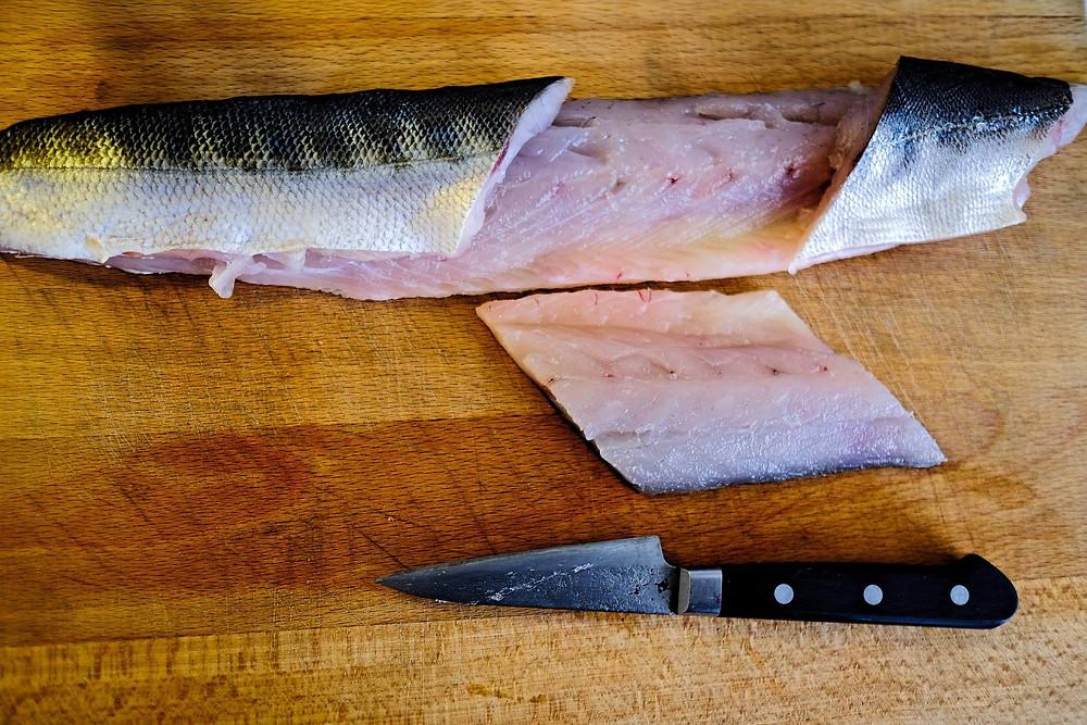 Wander by Paris barracuda fish filet