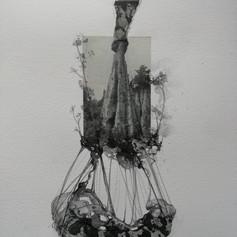 Angela Viola, Interior Landscapes