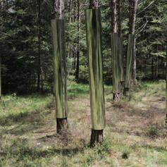 Collettivo00 (Silvia Scandola, Roberto Nero, Andrea Filippucci, Federico Marchetti, Giulia Pensa), Reflective Grove