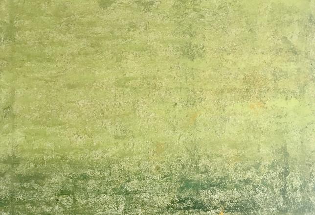 Fulvio Celico