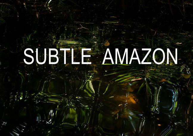 Ana Leal | SUBTLE AMAZON