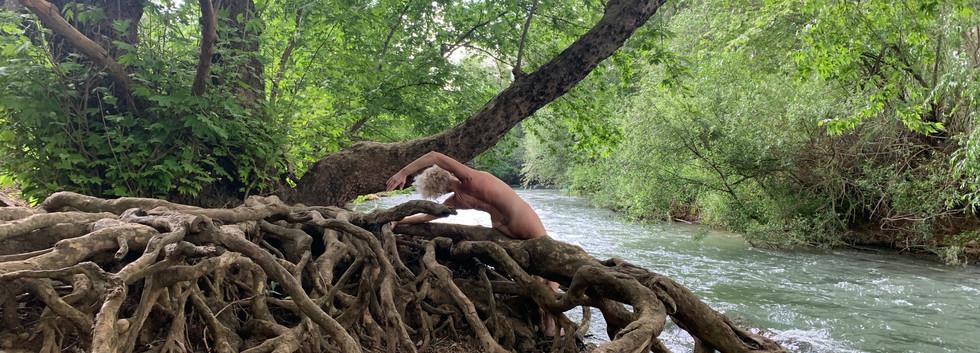 Yarden Root