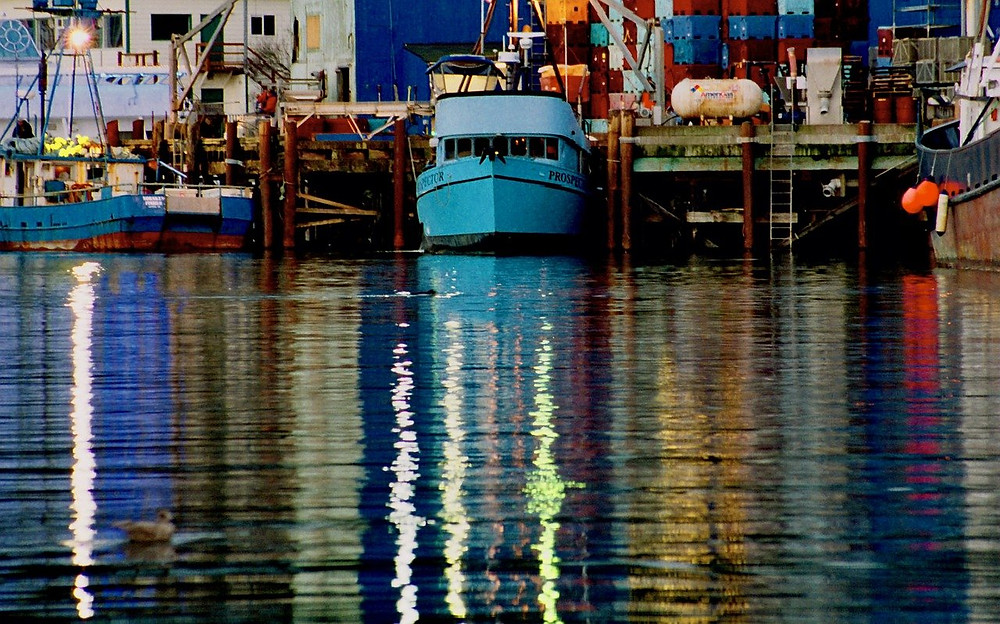 Newport Bay to pay penalties for violations of Clean Water Act.