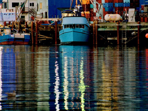 Newport Bay Boatyard Penalized for Clean Water Act Violations