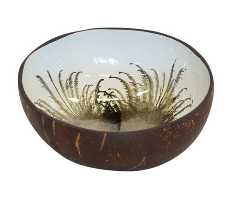 Feather coconut bowl