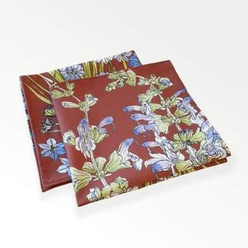 Rust Aristea cotton napkin - set of 2