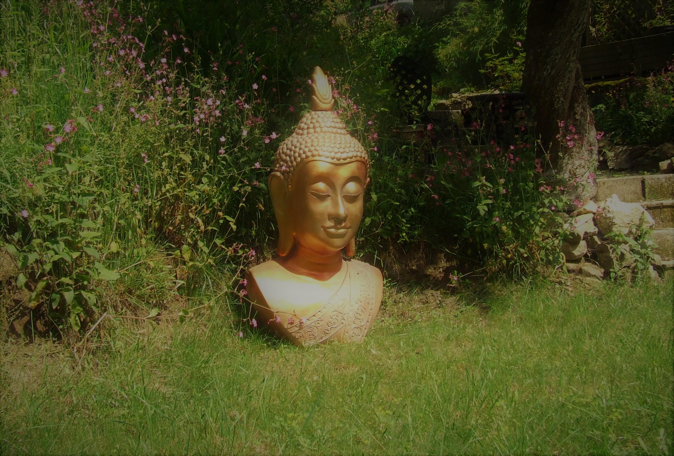 Un lieu de méditation ...